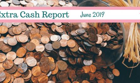 Income Report 2019