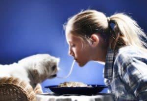 pet loyalty programs canada